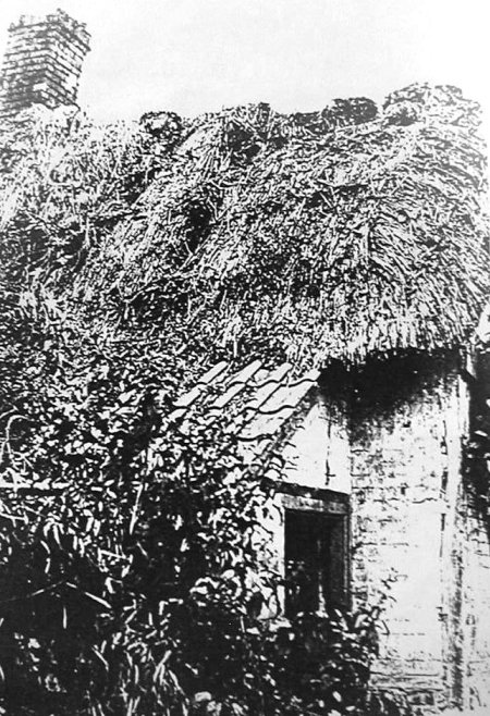 William Willis once lived in this old cottage on Northbrook, Market Lavington. The photo was taken in about 1910.