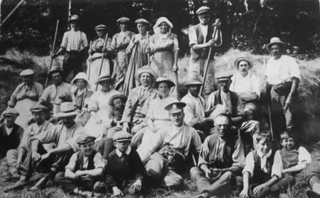 Haymakers at Knapp farm, Market Lavington in 1915
