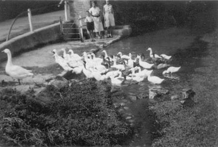 By Easterton pump in the 1930s