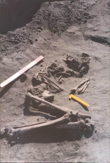 A Saxon skeleton, as found