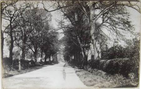 The Spring, Market Lavington on a card posted in 1926