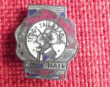 Teddy Tail League badge found on the old Recreation Ground in Market Lavington