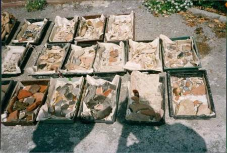 Hundreds of other finds