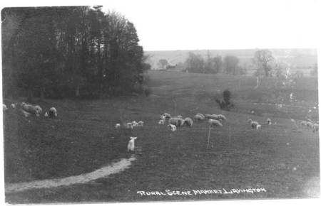 A rural scene in Market Lavington in 1937