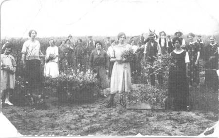 Picking flowers. Bertha Moore is the lady in the centre