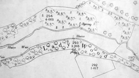 1900 map extract showing Lady Wood and nearby pine woods