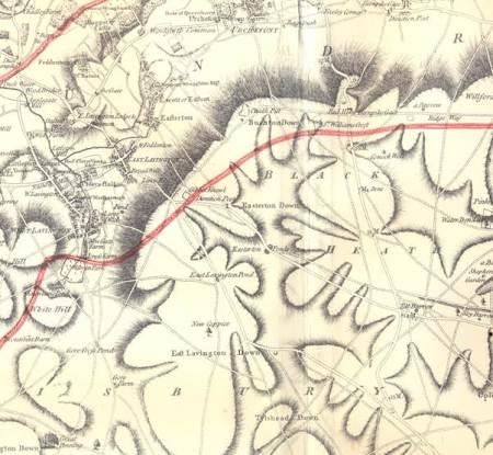 The Lavington area